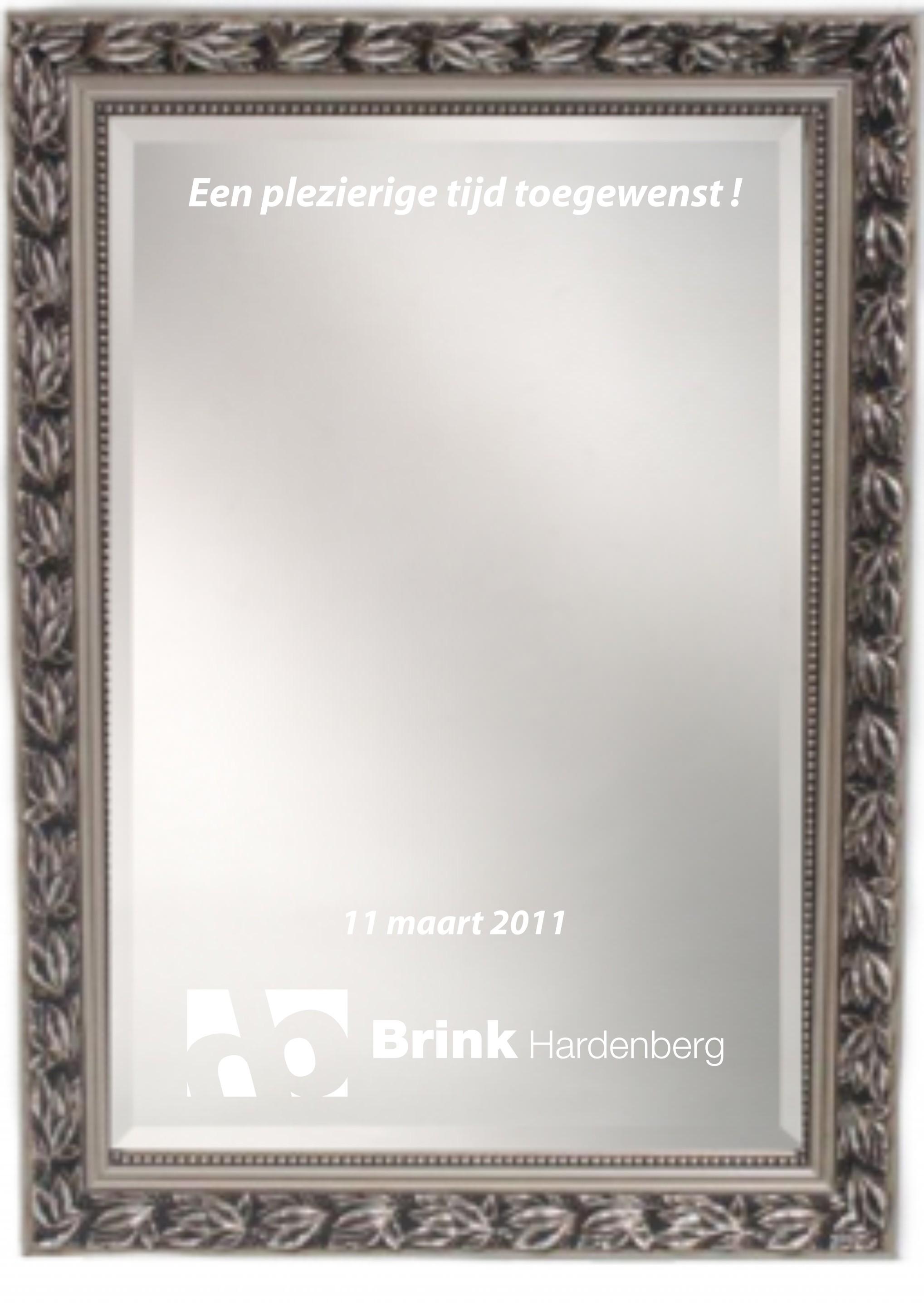 Spiegel 50x70cm