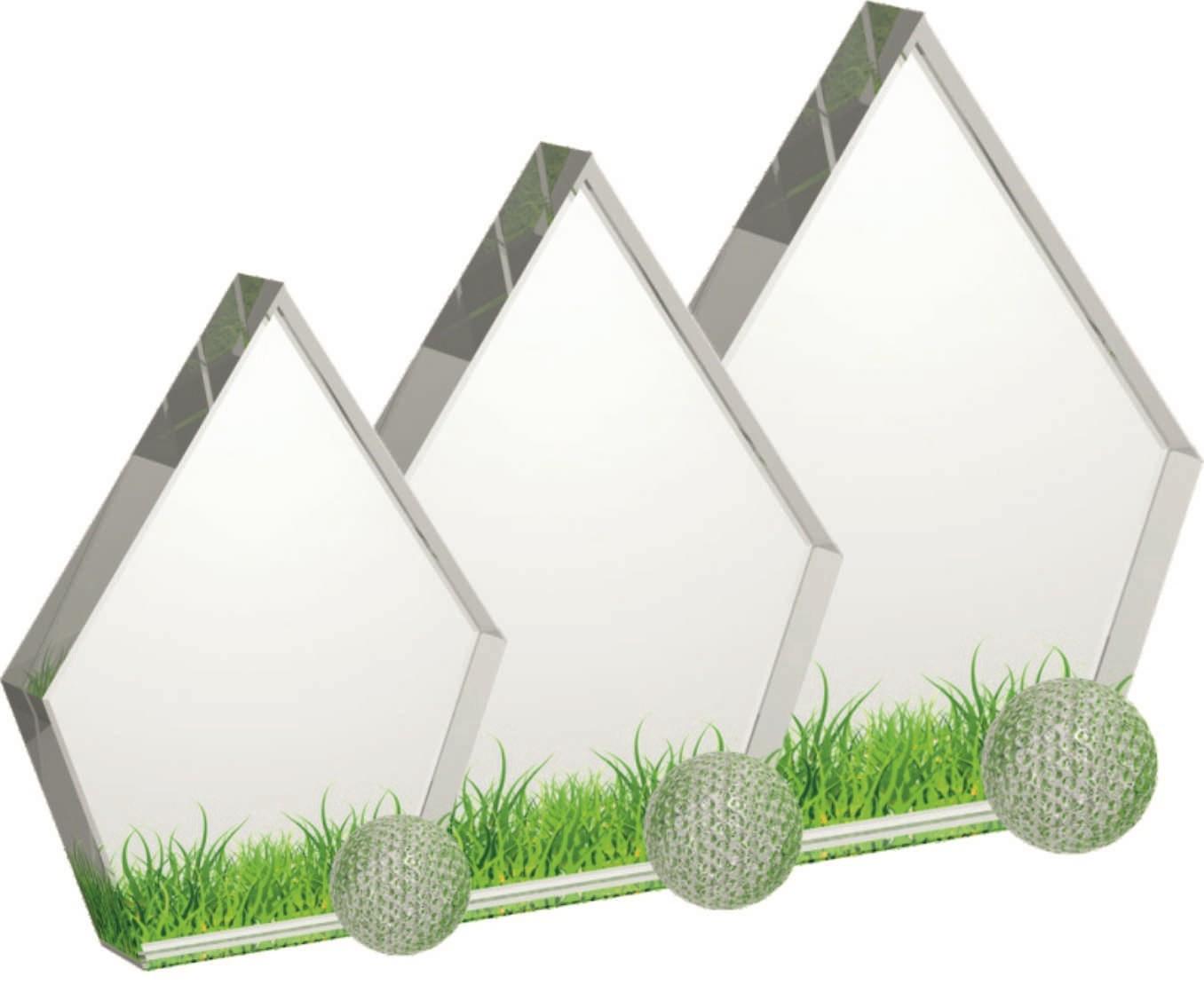 Glazen Trofee Golf 5010