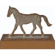 Luxe trofee paard WBEL 790B 16.5cm