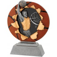 Standaard Basketbal WST1133 155x200